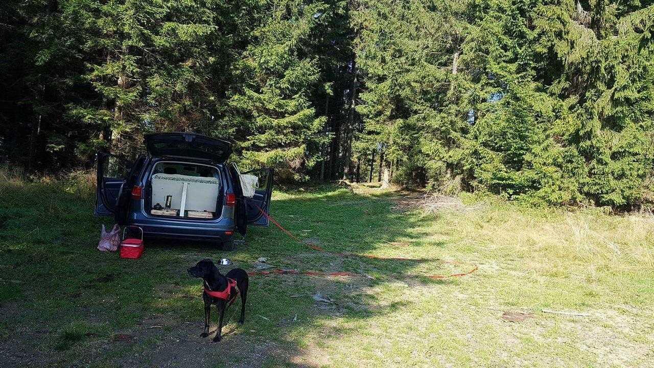 nimblecamper sharan diy car camping bed sleeping 1 1